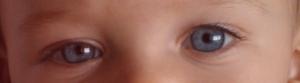 Esos absolutamente increíbles ojos