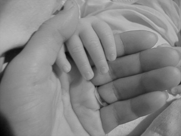 nuevo-nacimiento